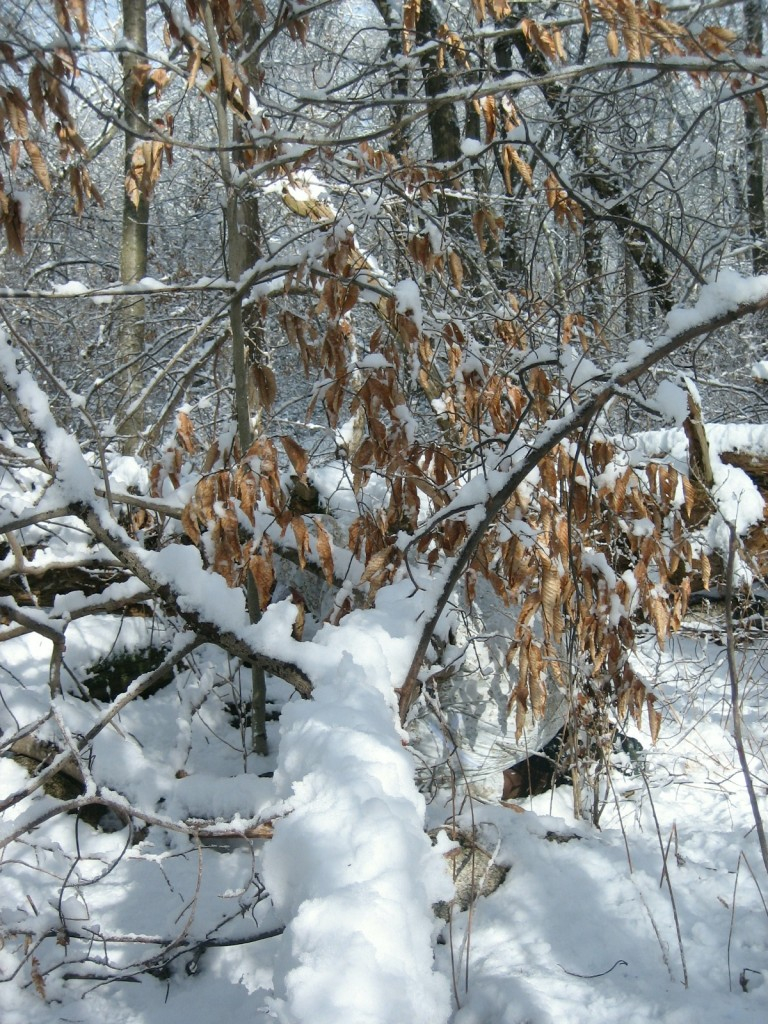 Snow Camouflage Pattern: Snowdrift - Kit Up!